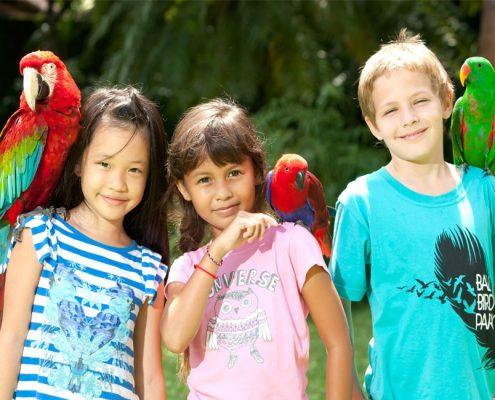 Bird-Park-Feature-Image